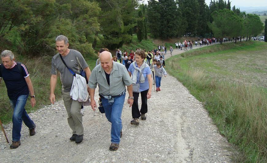 Via francigena in valdelsa a piedi in bici e a cavallo for Planimetrie da 1200 piedi quadrati